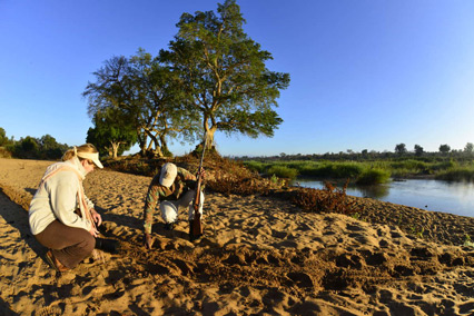 African Ivory Route trails