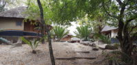 The Modjadji Camp is set in the Cycad reserve, and place of tranquility and natural beauty.