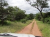 road-to-nthubu